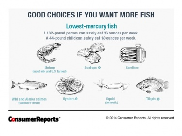 Is eating canned tuna safe during pregnancy mummysg for Fish with least mercury